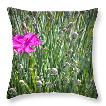 First Throw Pillow by Brian Caldwell