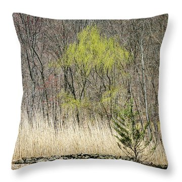 First Color - Throw Pillow