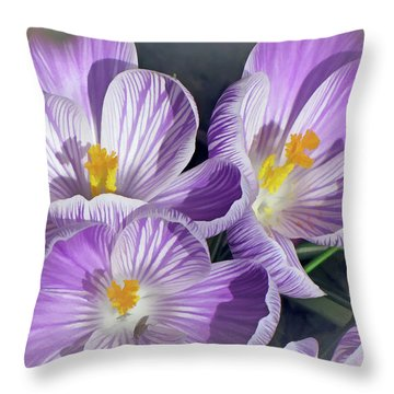Throw Pillow featuring the mixed media First Crocuses On The Sunny Side 6 by Lynda Lehmann