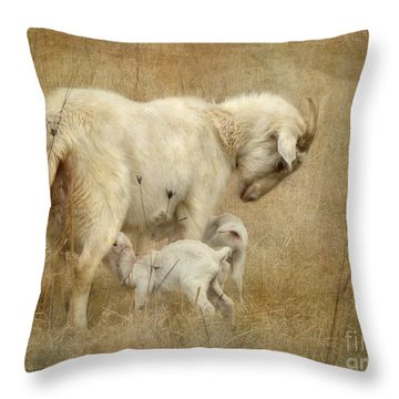 First Day Of Life Throw Pillow