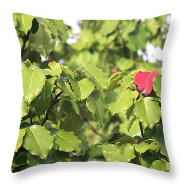 First Fall Leaf Throw Pillow