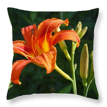 Throw Pillow featuring the photograph First Flower On This Lily Plant by Steve Augustin