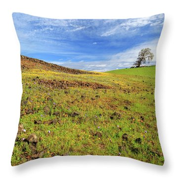 Throw Pillow featuring the photograph First Flowers On North Table Mountain by James Eddy
