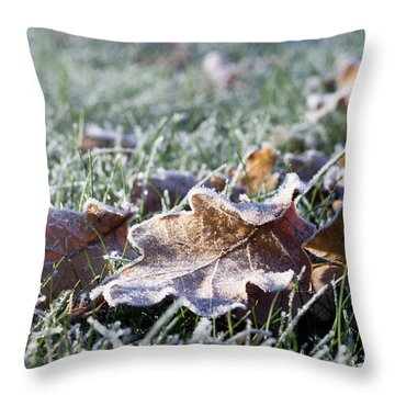 First Frost Throw Pillow