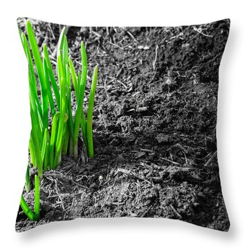 First Green Shoots Of Spring And Dirt Throw Pillow
