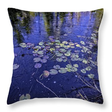First Ice Throw Pillow