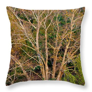 First Leaves To Fall Throw Pillow