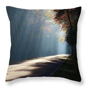 First Light Throw Pillow by Lamarre Labadie