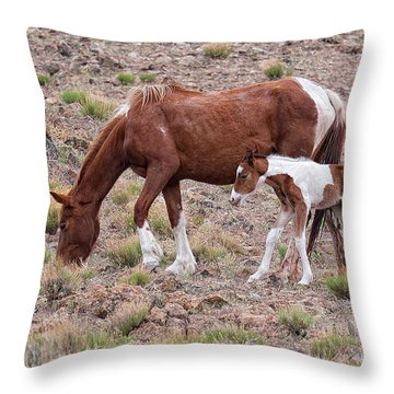 First Little Mustang Baby Paint - Class Of 2015 Throw Pillow