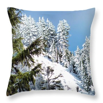 Throw Pillow featuring the photograph First November Snowfall by Wendy McKennon