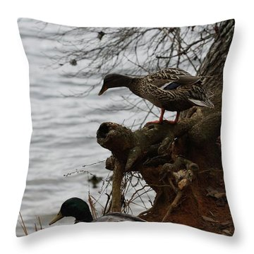 Throw Pillow featuring the photograph First One In by Kim Henderson