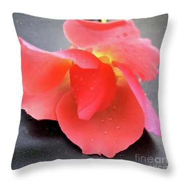 First Rose  Throw Pillow