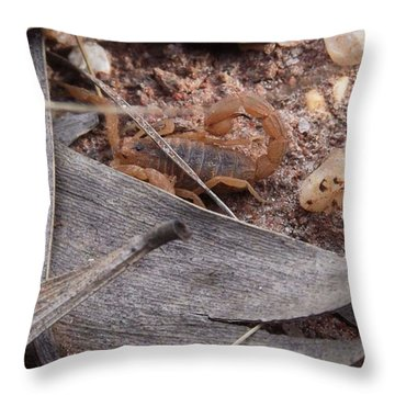 My First Wild Scorpion Throw Pillow