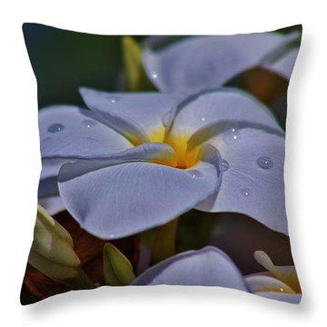 First Sign Of Rain Throw Pillow