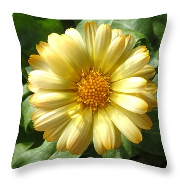First Sign Of Summer Throw Pillow