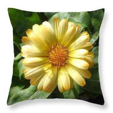 First Sign Of Summer Throw Pillow