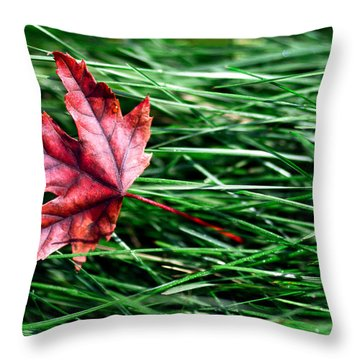 First Signs Of Autumn Throw Pillow
