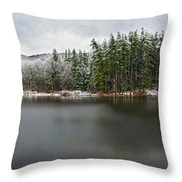 First Snow At Lake Nawahunta Throw Pillow