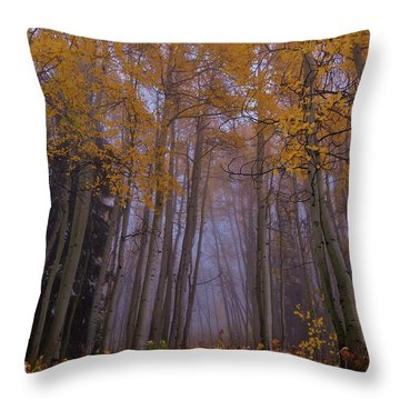 First Snow Fall Throw Pillow by Matt Helm