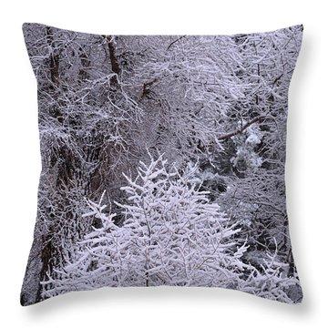 First Snow I Throw Pillow