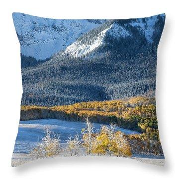 First Snow, Last Dollar Throw Pillow