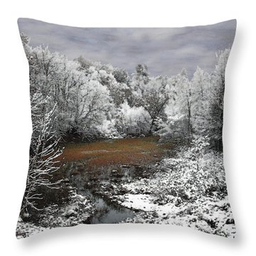 Throw Pillow featuring the photograph First Snow On An Oxbow by Wayne King