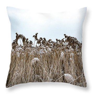 First Snow On Roman Reed Throw Pillow