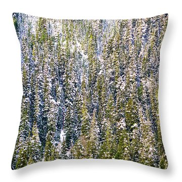 First Snow On Trees Throw Pillow
