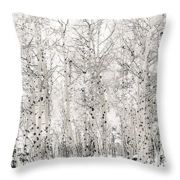 First Snow Throw Pillow by The Forests Edge Photography - Diane Sandoval