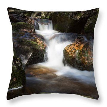 first spring sunlight on the Warme Bode, Harz Throw Pillow