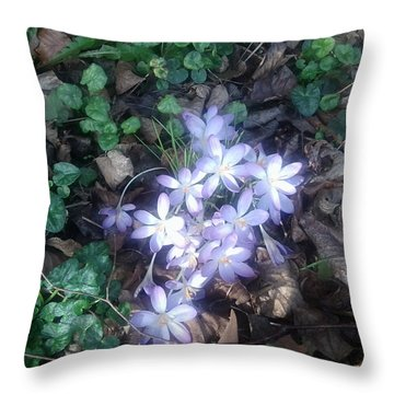 First Spring Treasures 2017 Throw Pillow