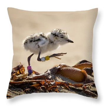 First Steps Throw Pillow by Alice Cahill