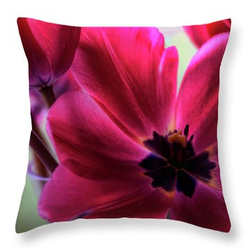 First To Wake Throw Pillow by Brad Granger