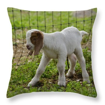 First Twin Throw Pillow by Debby Pueschel