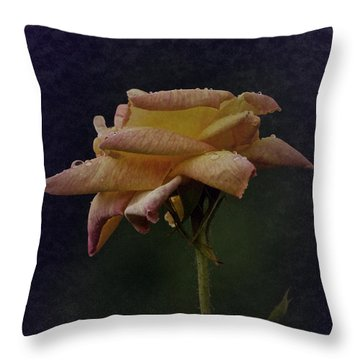 First Vintage Rose 2017 Throw Pillow by Richard Cummings