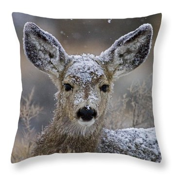 First Winter-signed Throw Pillow by J L Woody Wooden