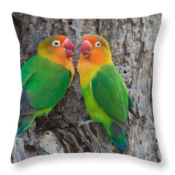Fischers Lovebird Agapornis Fischeri Throw Pillow