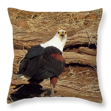 Fish Eagle Throw Pillow