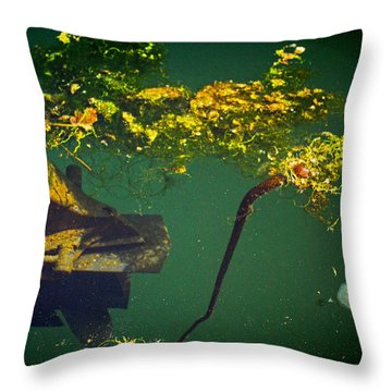 Fish Eye View Throw Pillow by Dale Stillman
