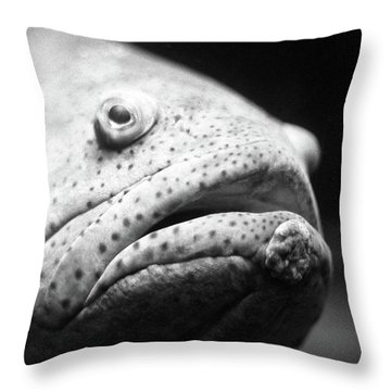 Fish Face Throw Pillow