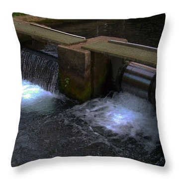Fish Hatchery At Bennett Springs Throw Pillow