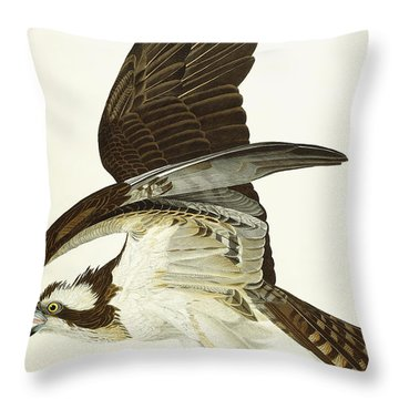 Fish Hawk Throw Pillow by John James Audubon