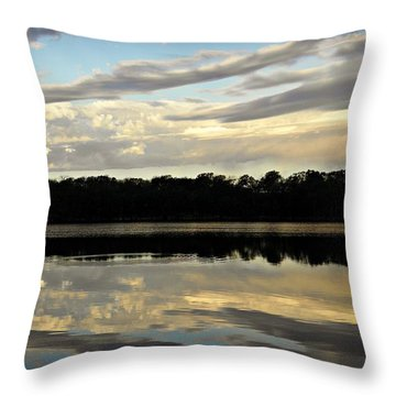 Throw Pillow featuring the photograph Fish Ring by Chris Berry