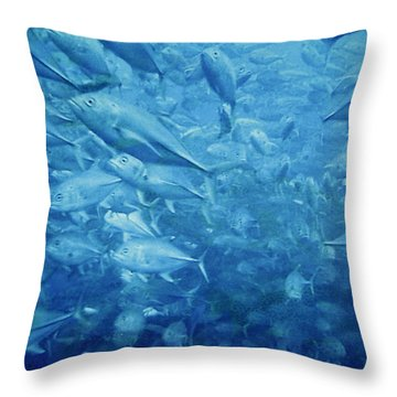 Fish Schooling Harmonious Patterns Throughout The Sea Throw Pillow by Christine Till