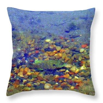 Fish Spawning Throw Pillow