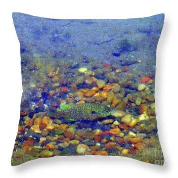 Fish Spawning Throw Pillow