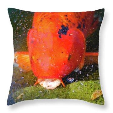 Fish Surprise Throw Pillow