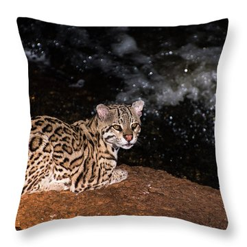 Fishing In The Stream Throw Pillow by Alex Lapidus