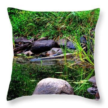 Fishing Pond Throw Pillow