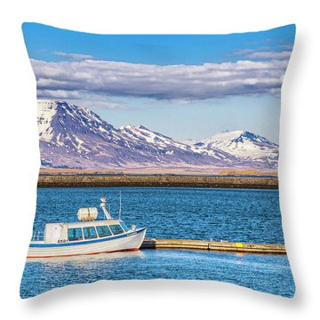 Fishing Throw Pillow by Wade Courtney